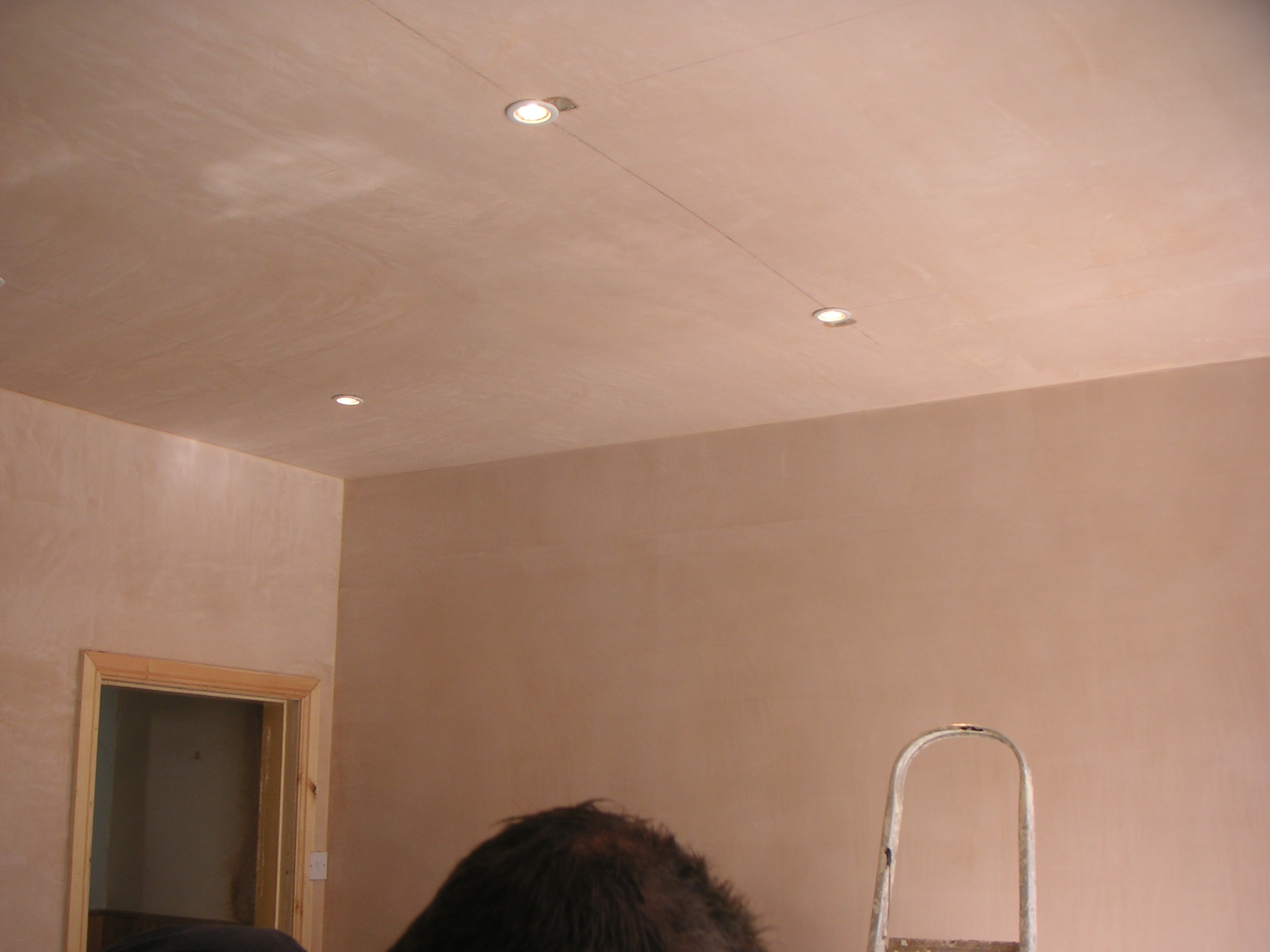 Plastering – Dry – lining and skimming banner 30