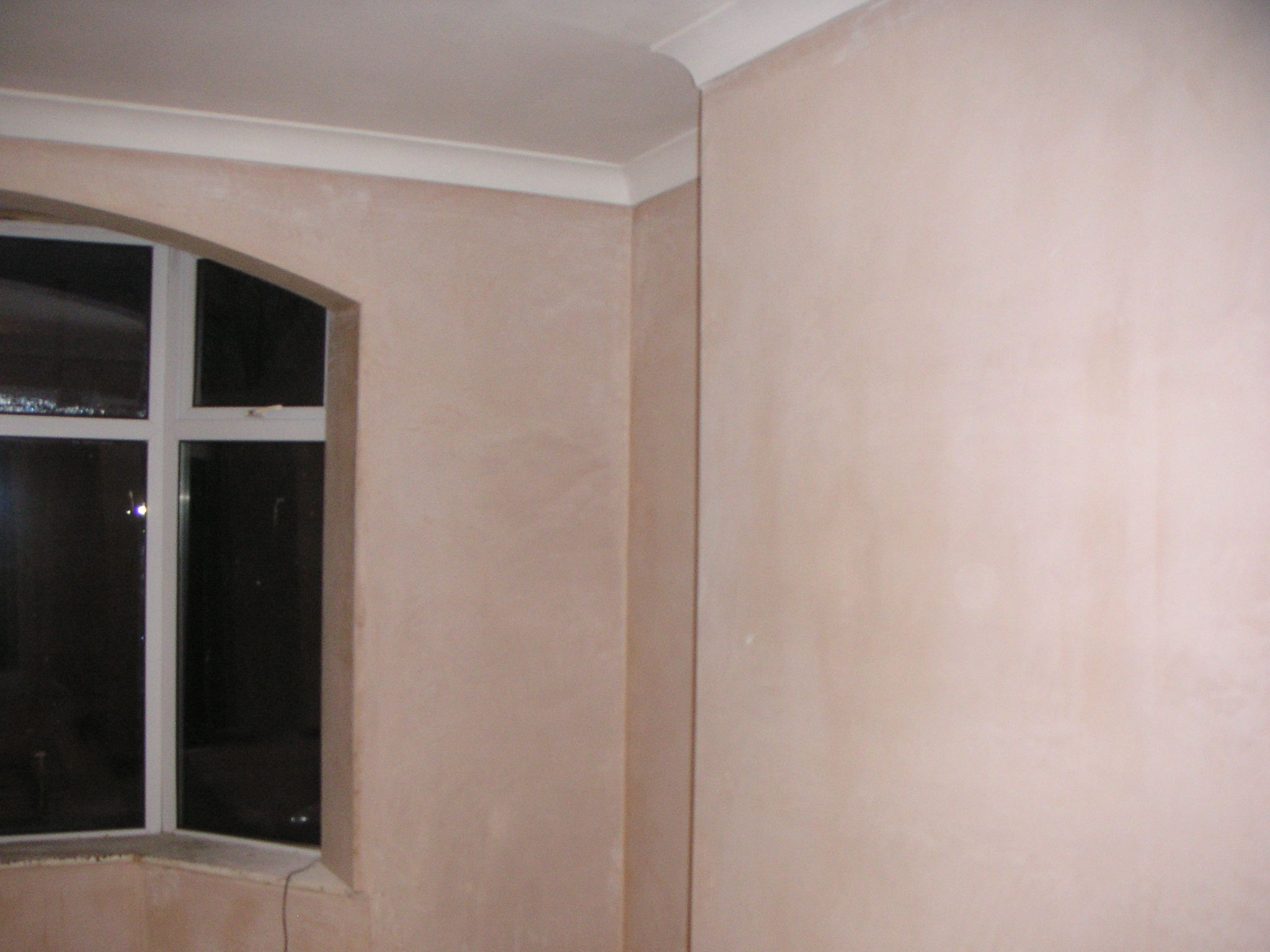 Plastering and Coving banner 13